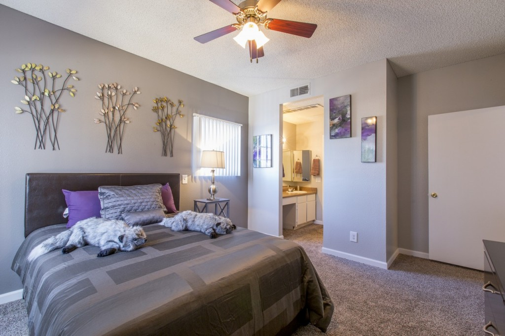 Stonegate, apartment, apartments, listing, real estate, photographer, photographers in Las Vegas, photography service, real estate photographer, realty, realty photography, model home, Las Vegas, Henderson, Boulder City, media, video, walk through, virtual tour, Las Vegas photographer, real estate video, videography, exterior photo, community photography, aerial photos
